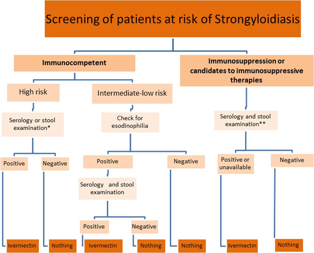 strongyloidosis cmd